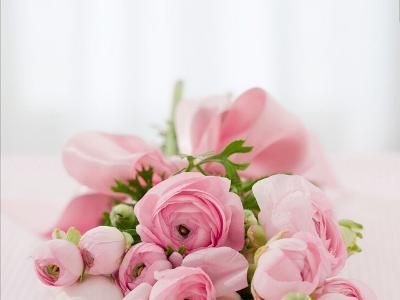 Rosenstrauß in pastell-rosa