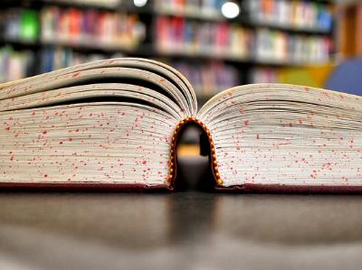 ein aufgeschlagenes Buch vor einem Bücherregal