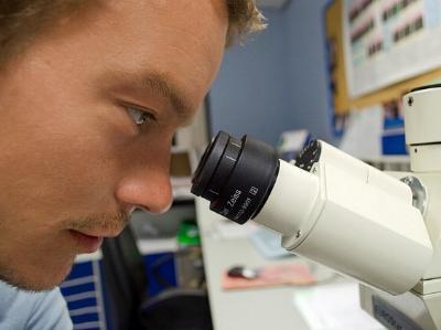 Wissenschaftler schaut in ein Mikroskop