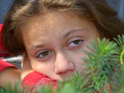 ein trauriges junges Mädchen blickt über einen Tannenzweig