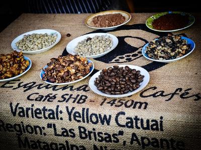 Teller mit verschiedenen Kaffeebohnen auf einem Jutesack